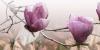 Декор Магнолия 1 розовый