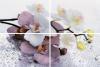 Панно Альба Орхидея из 4-х плиток AL-P-ORC