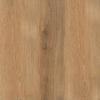 Керамогранит Tagro коричневый (C-TR4R112D)