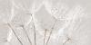 Декор Avangarde серый (AV2L091DT)